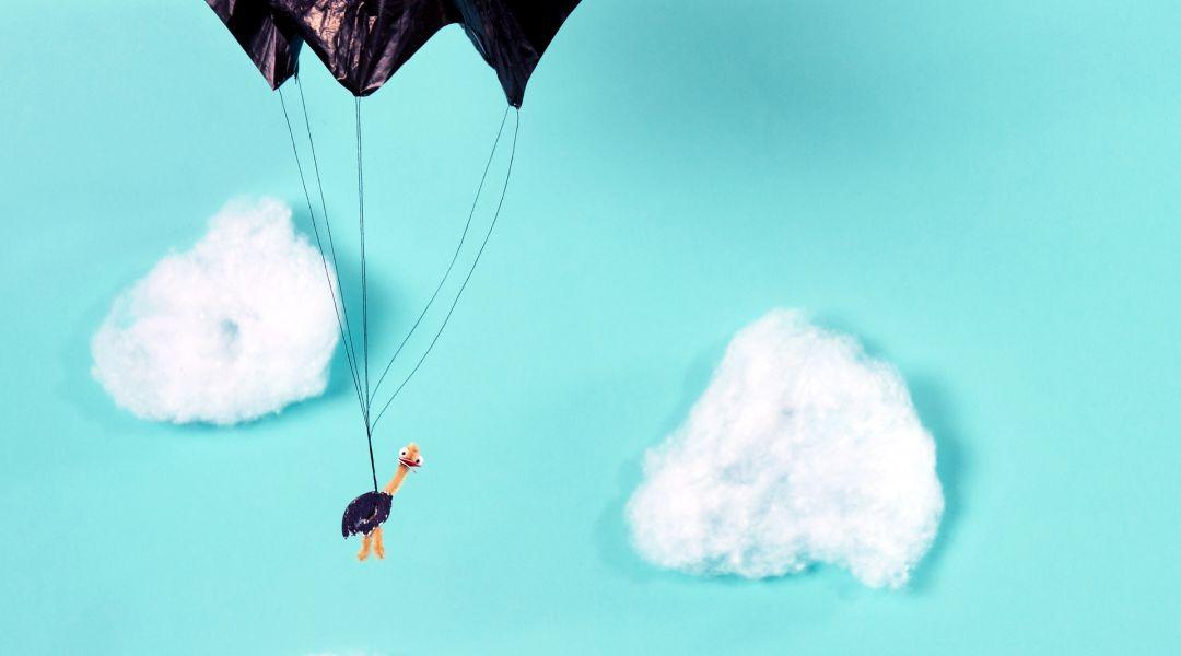 STEAM: Make a Parachuting Ostrich