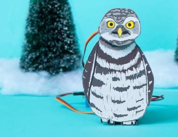 STEAM: Make an Animatronic Owl Figure
